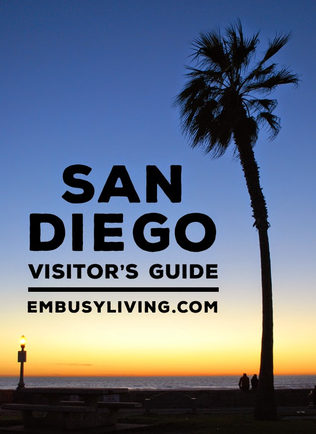 A Brief San Diego Visitor's Guide // Visit downtown San Diego, The San Diego Zoo, La Jolla, and more!