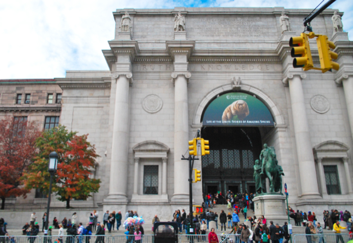 A Trip to American Museum of Natural History