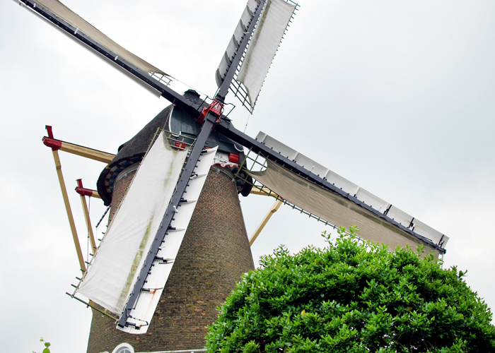 Visiting De Vlijt, a Working Windmill in Holland